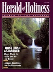 Herald of Holiness Volume 85 Number 07 (1996) by Wesley D. Tracy (Editor)